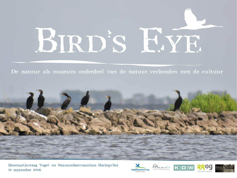 birds-eye-1